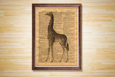 Giraffe print Animal poster Antique decor by CrowDictionaryPrints