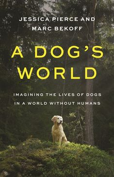 Title: A Dog's World: Imagining The Lives of Dogs in a World without People. Author: Jessica Pierce, Marc Bekoff. Publisher: Princeton University Press, 2021. Indexer: Amron Gravett, Wild Clover Book Services, www.amrongravett.com University Of Colorado, Princeton University, Yellowstone Wolves, Evolutionary Biology, History Magazine, Buy A Dog, British Wildlife, Veterinary Care, Wild Dogs