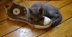 Voici 10 astuces contre les mauvaises odeurs dans les chaussures.  Découvrez l'astuce ici : http://www.comment-economiser.fr/odeurs-chaussures.html
