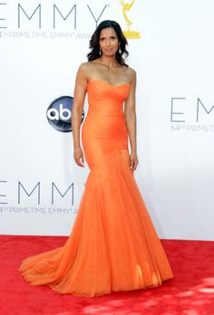 "Emmys The Best of the Red Carpet. Padma Lakshmi, host of nominated reality program ""Top Chef,"" is statuesque in a bold chiffon gown by Monique Lhullier. Padma Lakshmi, High Fashion Dresses, Nice Dresses, Formal Dresses, Chiffon Gown, Fashion Images, Red Carpet Looks, Beautiful Gowns, Gorgeous Dress"