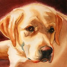 Gus by MarySue Krueger Watercolor ~ 8 x 8 Watercolor Animals, Watercolor Paintings, Dog Portraits, Animal Paintings, Dog Art, Pet Birds, Painting & Drawing, Cute Animals, Drawings