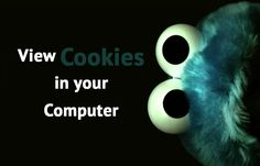 How to View Cookies in your Computer