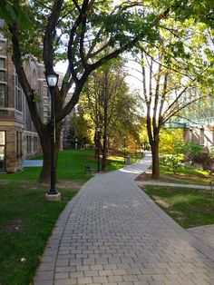 Philosopher's Walk - University of Toronto  Priscilla Mae et al