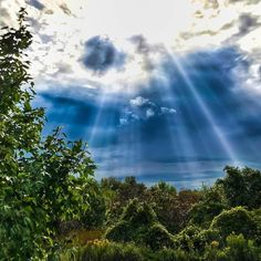 On a dark day the sky opens with rays of hope __ Today's walk: 3.31 mi.; total since 3/30/14: 5598.89 miles #raysofhope #darknessandlight #naturepreserve #contrasts #hurricaneirma #photooftheday #lightrims #backlightphotography #walking #suburbanexpedition #shotwithmoment #landscapelovers #walk10000miles #fitnesswalking #walks #ig_world_photo #landscapephotography #master_gallery #wonderful_places  #ig_world_photo #wisconsinphotographer #hiddenpaths #gratitude #hope #instagood #earth…