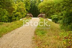 Trail over Bridge entering Deciduous Forest Royalty Free Stock Photo