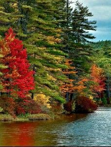 Beautiful Sites, Beautiful World, Beautiful Places, Fall Images, Fall Pictures, Autumn In New York, Waterfall Fountain, Autumn Scenes, Colorful Trees