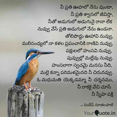 26 Best love life quotes telugu kavitalu by Sandeep