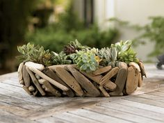 Driftwood Succulent Garden Men might not be much for vases, but this driftwood planter has a rugged and rustic look. Made of wood from the Oregon coast, it comes with a variety of hardy succulents. $89; vivaterra.com