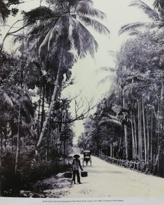 Straits Settlements, History Timeline, Old Maps, Back In Time, Kuala Lumpur, Brunei, Old Photos, My Drawings, Singapore