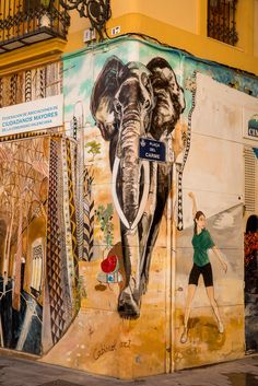 Doen in Valencia: street art Street Art, Spain Holidays, Time Travel, Travel Tips, Santiago Calatrava, Andalusia, Spain Travel, World Traveler, Where To Go