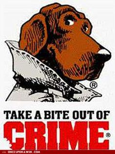 McGruff! Yes, even a dog can inspire me to a career in policing...still policing something...