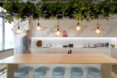 White + Black + Light Timber + brand colour + greenery?  Pacific Brands Underwear Group – Burwood Offices