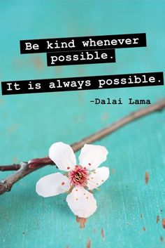 Be kind whenever possible it is always possible. .Dalai Lama