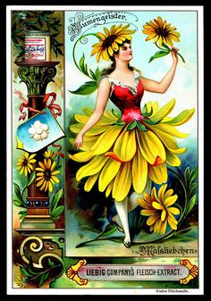 1895. Daisy Flower Spirit trading card issued by Liebig Extract of Beef Company. S445.