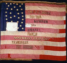 Flag of the Indiana Infantry Regiment. Flags Of Our Fathers, Civil War Flags, Union Flags, Civil War Photos, American Spirit, American Civil War, Civilization, Battle, Civil Wars