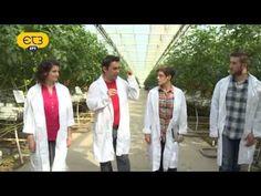 """Μητέρα Γη, """"Σύγχρονες μέθοδοι φυτοπροστασίας και υδροπονικές καλλιέργειες"""" - YouTube Coat, Youtube, Sewing Coat, Peacoats, Youtubers, Coats, Jacket, Youtube Movies"""