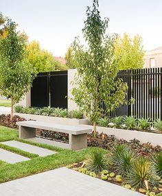 immergrüne Pflanzen Metall Gartenzaun