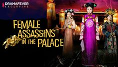 New DramaFever Series....Female Assassins in the Palace