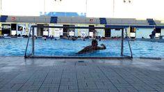 Water-Polo: Goalkeeper - Jump Training