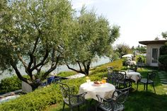 The garden of the Acquaviva Hotel, nice hotel on Garda Lake. The private white-pebble beach (typical of the area) is comfortable and well-maintained), with a few rocky outcrops. http://www.hotelacquaviva.it/hotel-con-spa-lago-di-garda.asp/lang_en/s_1/private-beach.html