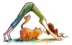 This is so my cats when I do yoga :)