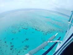 Live from the Great Barrier Reef don't catch the boat- take the chopper @gbrhelicopters .  #gbr #greatbarrierreef #reef #ocean #blue #coral #turtles #fish #shark #australia #queensland #travel #tropical #palmtrees #rainforest #igtravel #travelgram #photooftheday #love #moseytravel by moseytravel http://ift.tt/1UokkV2