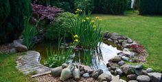 Jezírko by mělo být chloubou vaší zahrady