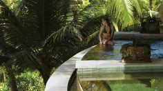 Sayan Video | Sayan Photo | Four Seasons Bali at Sayan