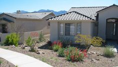 Some flowering desert plants give a variety of colour to this front yard.  A dry creek bed runs down the fence line between the two properties. Spread out throughout the front yard, some small local rocks are placed between the plantings. Picture compliments of www.aridplantdesigns.com
