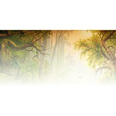 Geen titel ❤ liked on Polyvore featuring backgrounds, tubes, nature, effects en fade