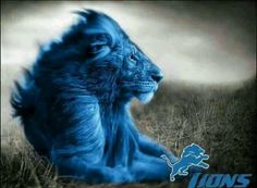 Detroit Lions, gotta support the hubby's team! Detroit Lions Football, Detroit Sports, Detroit Tigers, Football Fans, Cincinnati Bengals, Indianapolis Colts, Sports Teams, Best Running Backs, Lion Love