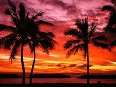 I'd watch the sunset! #Hawaii #sunset
