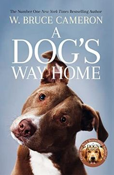 Buy A Dog's Way Home: The Heartwarming Story of the Special Bond Between Man and Dog by W. Bruce Cameron and Read this Book on Kobo's Free Apps. Discover Kobo's Vast Collection of Ebooks and Audiobooks Today - Over 4 Million Titles! Got Books, Books To Read, Buy A Dog, Man And Dog, Dog Runs, What To Read, Book Photography, Free Reading, Love Book
