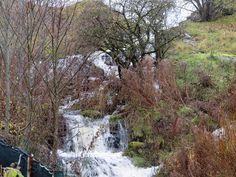 Veeseire: Otsingutulemused päringule Harku World Wetlands Day, Limestone Quarry, Water Quality, Waterfall, Nature, Plants, Facebook, Naturaleza, Waterfalls