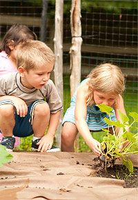 Choosing What to Plant (with kids in mind) @communityplaythings