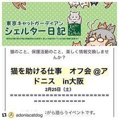 #Repost @adoniscatdog with @repostapp ・・・ この度、@tokyocatguardian 東京キャットガーディアン様主催のイベントを、アドニスの本拠地で開催する事が決定致しました‼️. . すでに私のほうで、保護活動に興味を持っておられる親しい方々にはお声がけしております。 . 席が確保出来るかどうか分かりませんので、興味のある方はDMをお願いします٩꒰。•◡•。꒱۶. . 【NPO法人 東京キャットガーディアン】とは、日本で初めての猫カフェ型開放型シェルターを開設し、動物病院や猫付きシェアハウス、猫付きマンションなどの運営を手がけるなど、殺処分減少に大きく貢献されている保護団体です。 . また、アドニスメンバー @yuuki_koma  ユウキさんち のうにちゃん、マルタちゃんの出身シェルターでもあります!. . あるフォロワーさまが、アドニス計画時から東京キャットガーディアンの代表様にアドニスをご紹介くださり、ずっと「何かご一緒出来れば」とお声がけを頂いておりましま。 .…