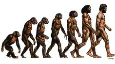 Human Evolution Scientists are certain that human evolution happened and is still happening. For one, humans share 99% of genetic sequence with chimpanzees and bonobos and this suggests that we share a common ancestor with them.