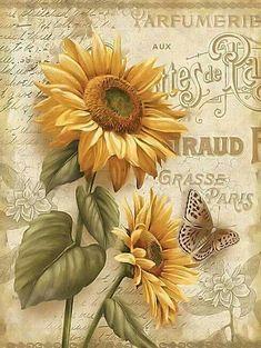 Beauty in Bloom III, girasoles, mariposa, decoupage, Decoupage Vintage, Decoupage Paper, Vintage Diy, Vintage Paper, Vintage Style, Vintage Prints, Vintage Posters, Images Vintage, Sunflower Art