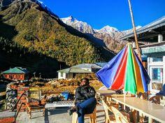Basking in the early morning sun of Chitkul, Himachal Pradesh