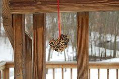 DIY Bird Feeders with 2 ingredients. Great for young kids too!