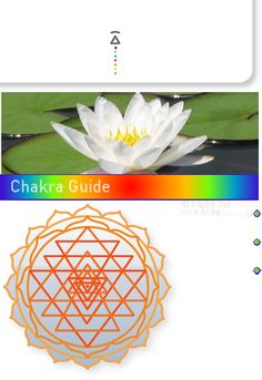 07_Sahastrara | Chakra | Kundalini