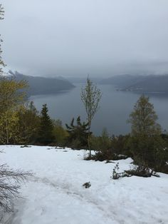 When in Balestrand, Norway.... HIKE