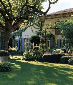 Her garden in Provence