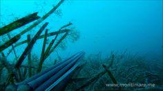 Podvodni ribolov - septembar mix