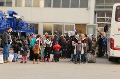 Baldrian für´s Volk – Der große Schwindel um reduzierte Flüchtlingszahlen!