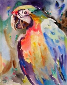 kay smith artist | ... Parrot, original painting by artist Kay Smith | DailyPainters.com