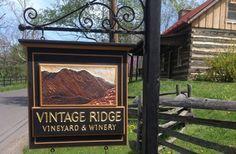 Vintage Ridge Winery Sign / Danthonia Designs