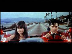 Image of Clambake for fans of Elvis Presley. Elvis as Scott Hayward