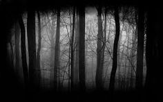 Image result for wallpaper images of gothic winter forests