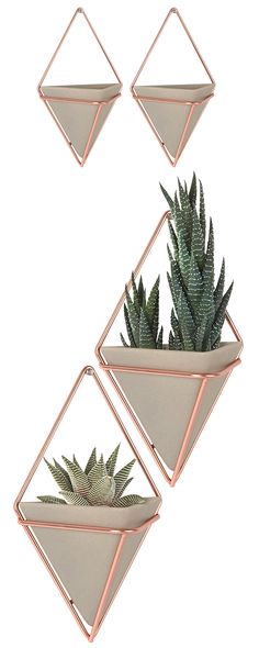 The Tribeca Wall Vessel set offers an optically pleasing geometric design. These multi-dimensional containers house small plants and other diminutive décor. Resin pots in copper wire frames add a disti...  Find the Tribeca Wall Vessel - Set of 2, as seen in the Décor Collection at http://dotandbo.com/category/decor-and-pillows/for-the-wall/decor?utm_source=pinterest&utm_medium=organic&db_sku=119671
